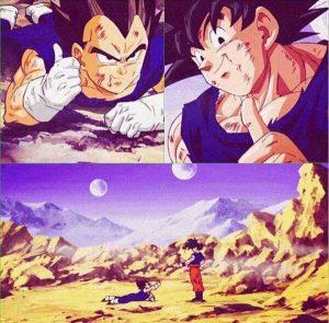 Goku vs Vegeta First Fight